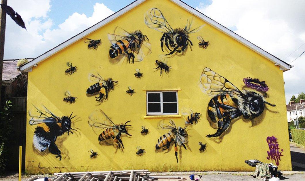 ''Σώστε τις μέλισσες'' - Το Λονδίνο γέμισε με εντυπωσιακά γκράφιτι που απεικονίζουν μέλισσες - Ο λόγος; - Κυρίως Φωτογραφία - Gallery - Video