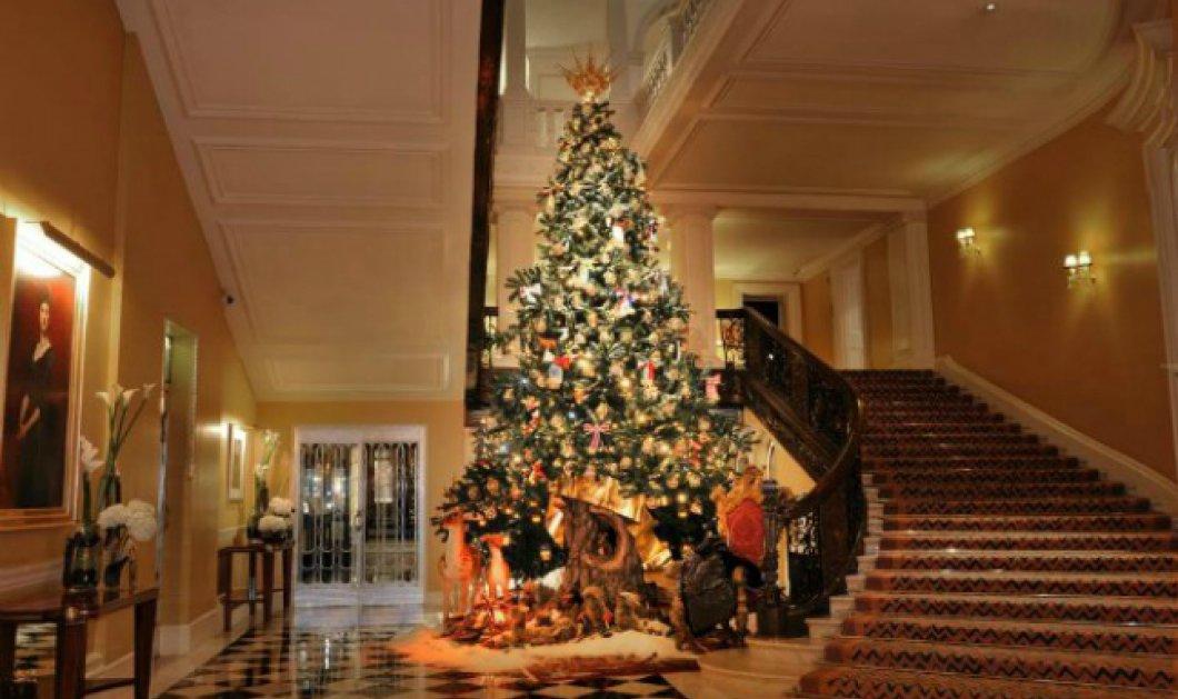 Χριστουγεννιάτικη πολυτέλεια στο Claridge's στο εμβληματικό ξενοδοχείο του Λονδίνου για πριγκιπικές γιορτές! (φωτό & βίντεο) - Κυρίως Φωτογραφία - Gallery - Video