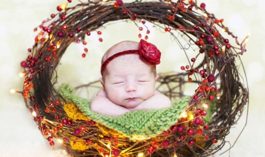 Τα έχετε δει όλα για τα Χριστούγεννα; Ε όχι, λοιπόν, αυτά τα γλυκούτσικα μωράκια αποκλείεται! - Κυρίως Φωτογραφία - Gallery - Video