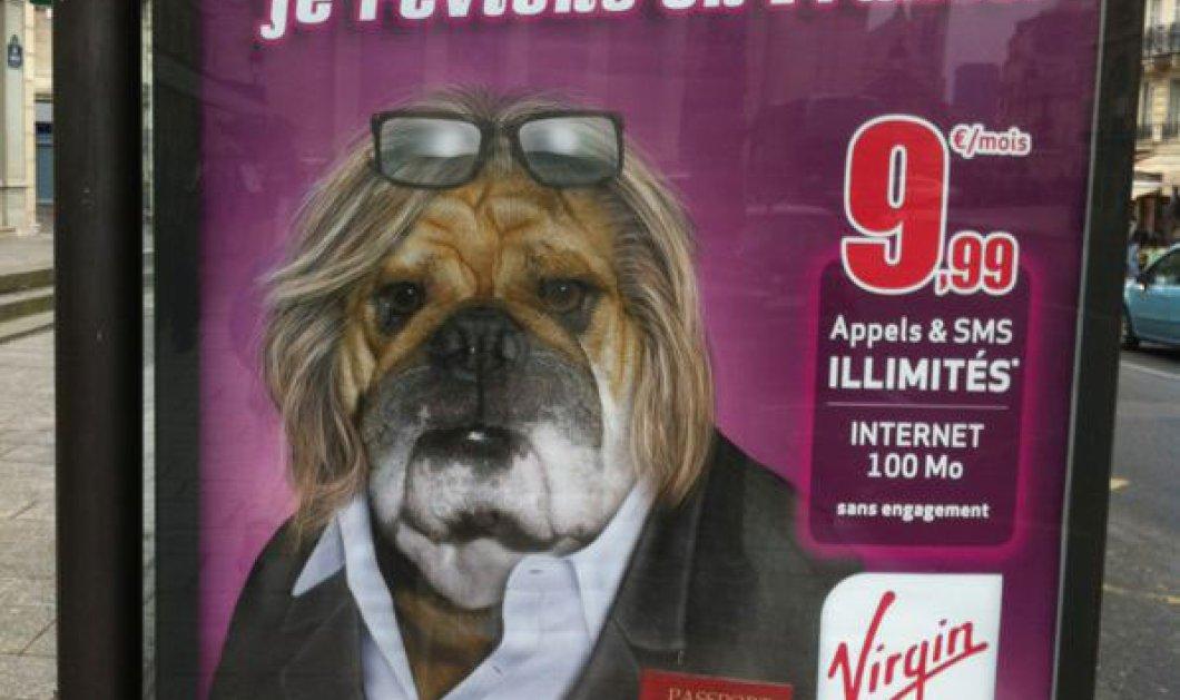 Δείτε πως κοροιδεύουν τον Gerard Depardieu οι Γάλλοι σε μία διαφήμιση για γυαλιά ηλίου .....τον έκαναν μπουλντόγκ - Κυρίως Φωτογραφία - Gallery - Video