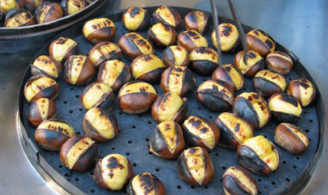 Ανακαλύψτε τα μυστικά του κάστανου συν μία ωραία συνταγή για τρουφάκια - Κυρίως Φωτογραφία - Gallery - Video
