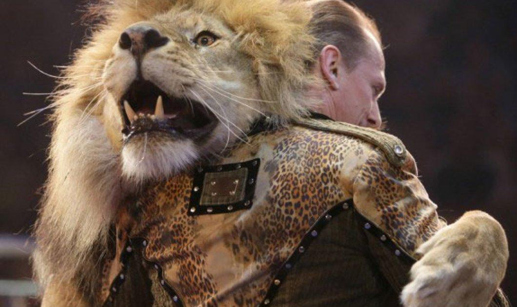 Φανταστική εικόνα βγαλμένη από παραμύθι! Ο Ολεξέι Πίνκο χορεύει με τον βασιλιά των ζώων στο διεθνές τσίρκο της Ουκρανίας! - Κυρίως Φωτογραφία - Gallery - Video