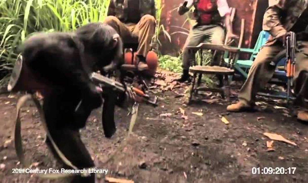 Τρεχάτε ποδαράκια μου - Δείτε τι έπαθαν στρατιώτες στην Αφρική που κορόιδευαν μία μαϊμού - Ήταν να μην πιάσει όπλο στα χέρια της! (βίντεο) - Κυρίως Φωτογραφία - Gallery - Video