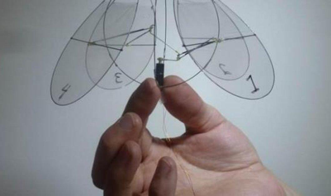 Απίστευτο: Το πρώτο ρομποτικό πτηνό που πετά ή... κολυμπά αν θέλετε στον αέρα, σαν... μέδουσα! (βίντεο) - Κυρίως Φωτογραφία - Gallery - Video