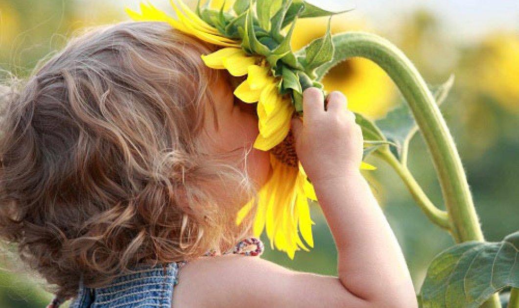 Το top 10 της ευτυχίας και το top 10 της δυστυχίας - Κυρίως Φωτογραφία - Gallery - Video