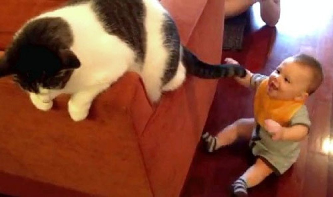 Cute video: το μωρό παίζει με την ουρά της γάτας!Smile its the end of the year! - Κυρίως Φωτογραφία - Gallery - Video