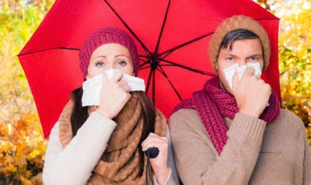 Οδηγός επιβίωσης στις αλλεργίες της άνοιξης! Τι πρέπει να κάνετε για να προφυλαχτείτε - Κυρίως Φωτογραφία - Gallery - Video