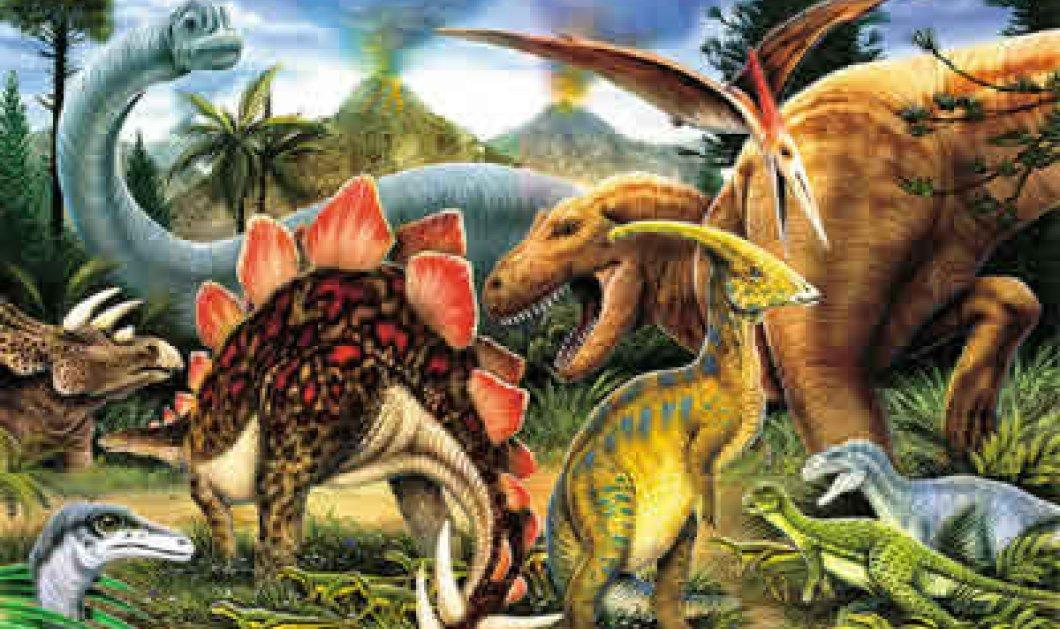 Αυτό είναι θέμα: Πώς φλέρταραν οι δεινόσαυροι - Κυρίως Φωτογραφία - Gallery - Video