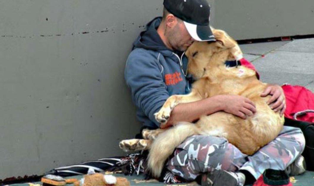 Σκύλος, ο καλύτερος φίλος του ανθρώπου ακόμη και στα πολύ δύσκολα-Για του λόγου το αληθές, δείτε αυτές τις φωτογραφίες! - Κυρίως Φωτογραφία - Gallery - Video