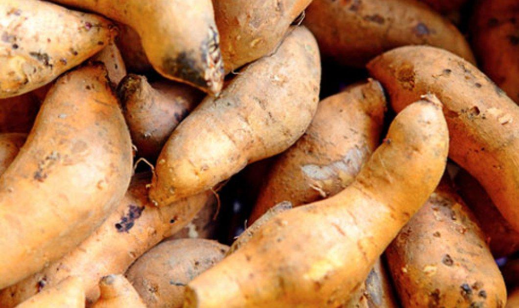 Ο γύρος του κόσμου της γλυκοπατάτας που γεννήθηκε στο Περού και συνάντησε ακόμη και τον Κάπταιν Κουκ  - Κυρίως Φωτογραφία - Gallery - Video