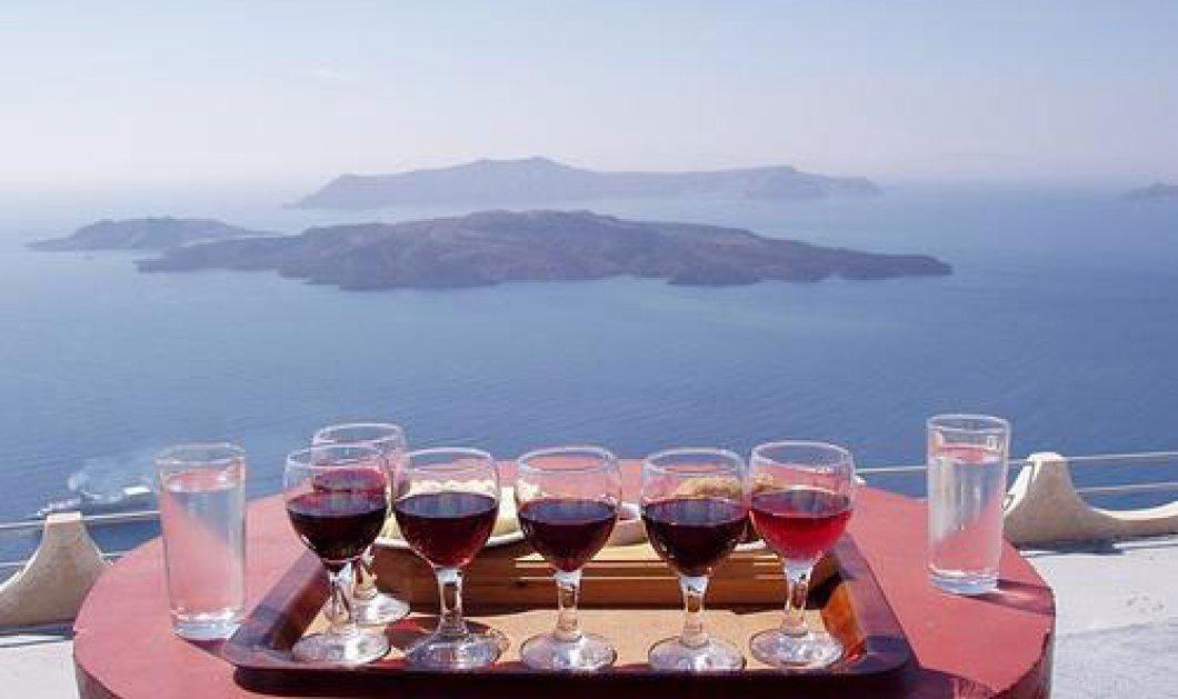 Οι Γερμανοί δεν γνωρίζουν ότι υπάρχει το καλό ελληνικό κρασί!! - Κυρίως Φωτογραφία - Gallery - Video