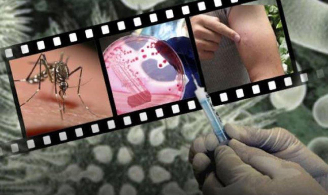 16 περιοχές επικίνδυνες για τον ιό του Νείλου - 40 τα κρούσματα μέχρι στιγμής - Κυρίως Φωτογραφία - Gallery - Video
