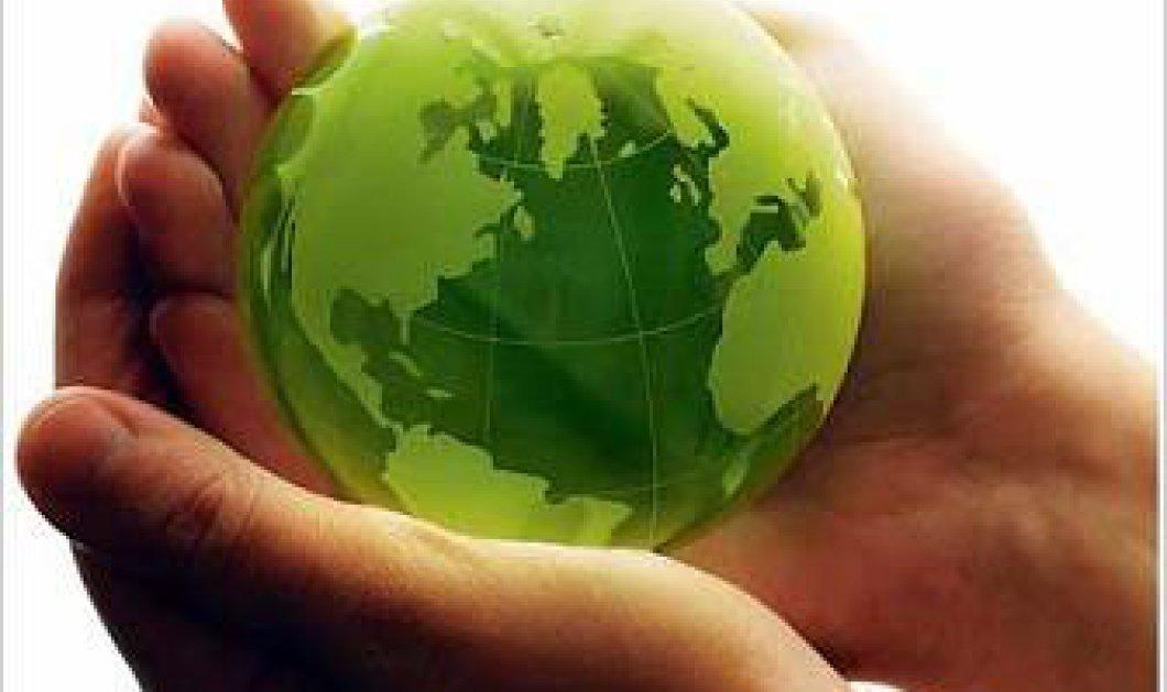 Γλωσσάρι για οικολόγους - Κυρίως Φωτογραφία - Gallery - Video