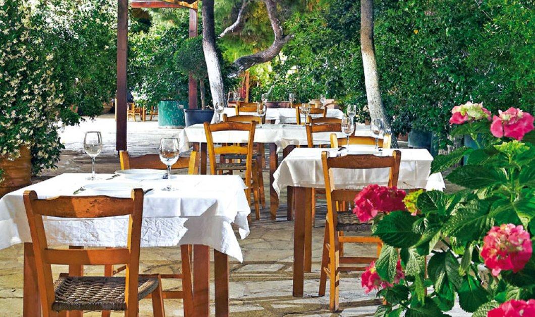 50% έκπτωση στα καλύτερα εστιατόρια της Αθήνας: 26 & 27/5 - Ημέρες βραβευμένης γαστρονομίας 2015 - Κυρίως Φωτογραφία - Gallery - Video