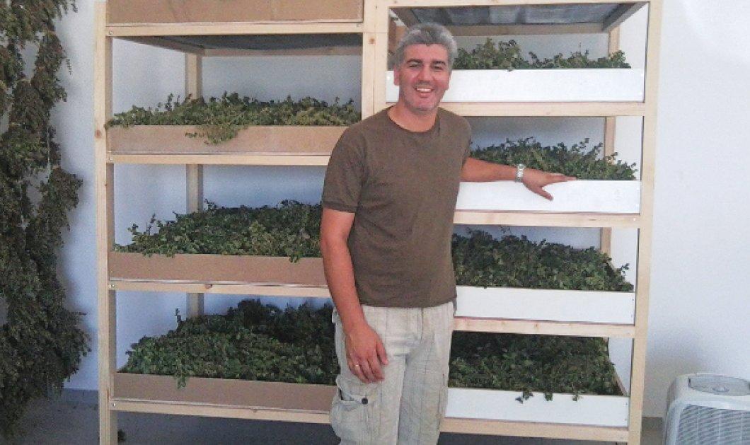 Made in Greece τα ''Organic Islands'': Ο Ν. Χατζηανδρέου τα απογείωσε σε 5 χρόνια - 60 ''shops'' ως την Αυστραλία! - Κυρίως Φωτογραφία - Gallery - Video