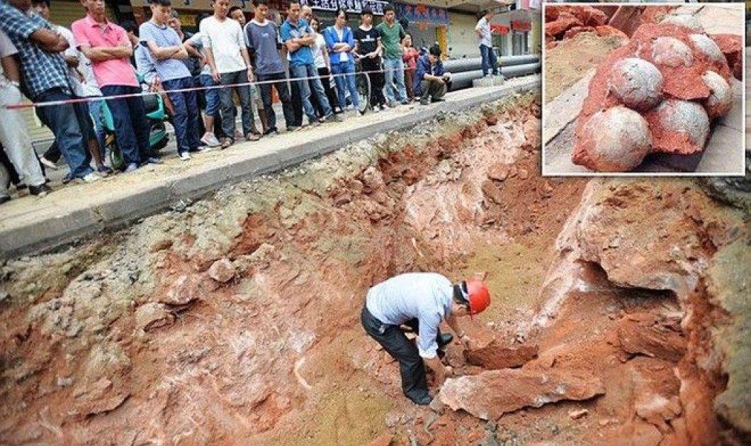 Αυτό θα πει Jurassic Park - βρίσκεται στην Κίνα & εκεί βρέθηκαν 43 αυγά δεινοσαύρων! - Κυρίως Φωτογραφία - Gallery - Video