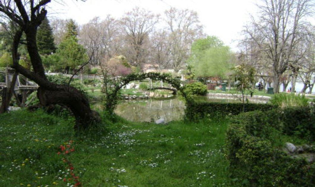 Ευρωπαϊκή Ημέρα Πάρκων η 24η Μαΐου! Μήπως ήρθε η ώρα να κάνουμε τη βολτούλα μας; - Κυρίως Φωτογραφία - Gallery - Video