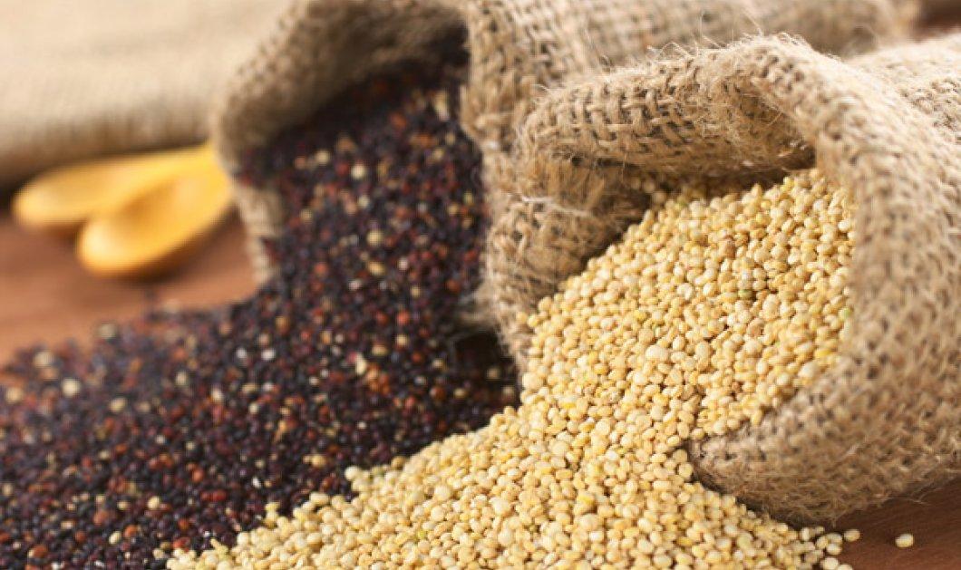 Τι είναι η κινόα, η τροφή του μέλλοντος που υπόσχεται καλά κέρδη; Όλα όσα χρειάζεστε για να καλλιεργήσετε το διατροφικό χρυσάφι! - Κυρίως Φωτογραφία - Gallery - Video