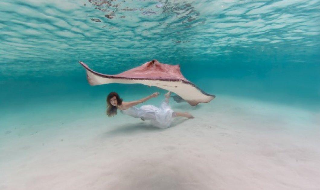 ''Γιορτάζουμε σήμερα'': 10 μαγικές εικόνες μιας γυναίκας - σειρήνας που κολυμπάει στο βυθό της θάλασσας! - Κυρίως Φωτογραφία - Gallery - Video