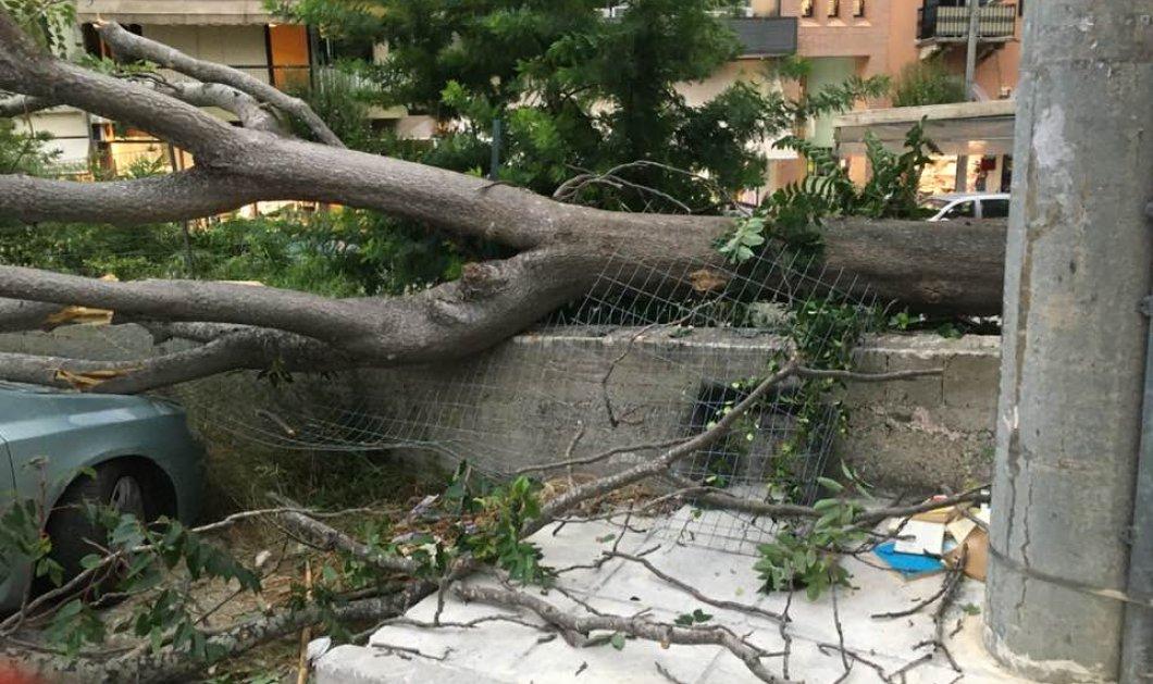 """Επιδείνωση του καιρού: Έκτακτο δελτίο από την ΕΜΥ - Καταστροφές από την """"Θάλεια"""" σε Β. Ελλάδα & Κέρκυρα (φωτό - βίντεο)  - Κυρίως Φωτογραφία - Gallery - Video"""