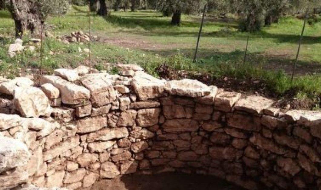 Άμφισσα: Ανακαλύφθηκε σπάνιος μυκηναϊκός τάφος με σημαντικά αρχαιολογικά ευρήματα! - Κυρίως Φωτογραφία - Gallery - Video