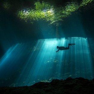 Η απίστευτη ομορφιά του βυθού στο Μεξικό - Φωτογραφία: Fabrice Guerin/National Geographic - Κυρίως Φωτογραφία - Gallery - Video