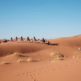 5 απίστευτα πράγματα που συμβαίνουν στην Έρημο Σαχάρα! - Κυρίως Φωτογραφία - Gallery - Video